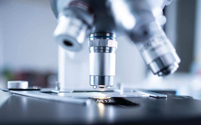 microscope, bacteria, gum disease, Darlene Sand Wall DMD, dentistry