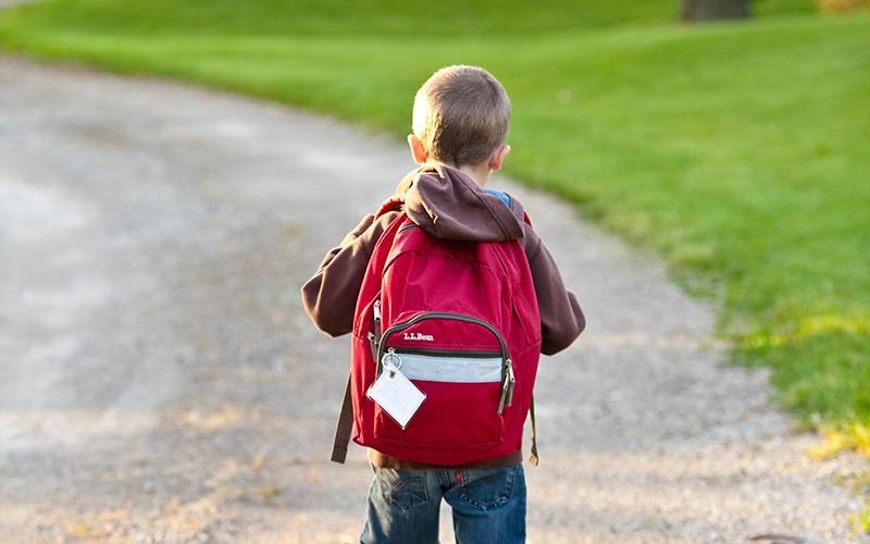 tooth-healthy school lunch, kid, backpack, Darlene Sand Wall DMD, dentistry